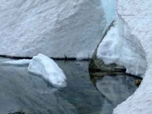 10578305-glacier